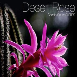 Desert Rose/Satrangi Re - Seattle Soundbytes