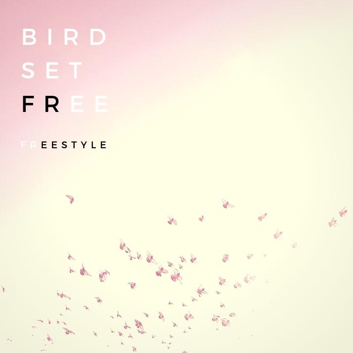 BIRD SET FREE